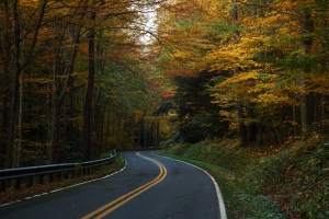 West Virginia Winding Country Road - ForestWalker.com. Licensed under Creative Commons Share Alike 3.0